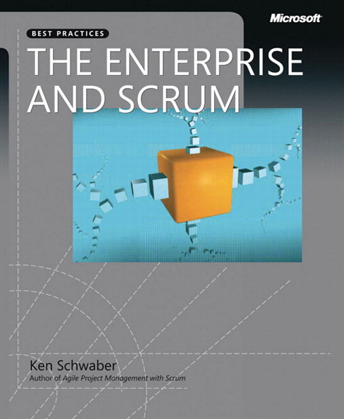 Enterprise and Scrum, The